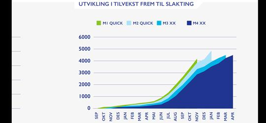 Development in growth up to harvesting  The trout that were fed with the two codes M1 and M2 containing QUICK demonstrated a clearly improved growth curve during the commercial trial conducted at Gråvik.